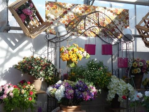 Il giardino dei giorgi lavagna coltivazione vendita for Vendita semi fiori